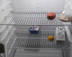 Image of near empty refrigerator
